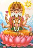 Брахми-марма: топография и активация